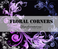 Floral_Corners___PSCS_brushset_by_Lileya