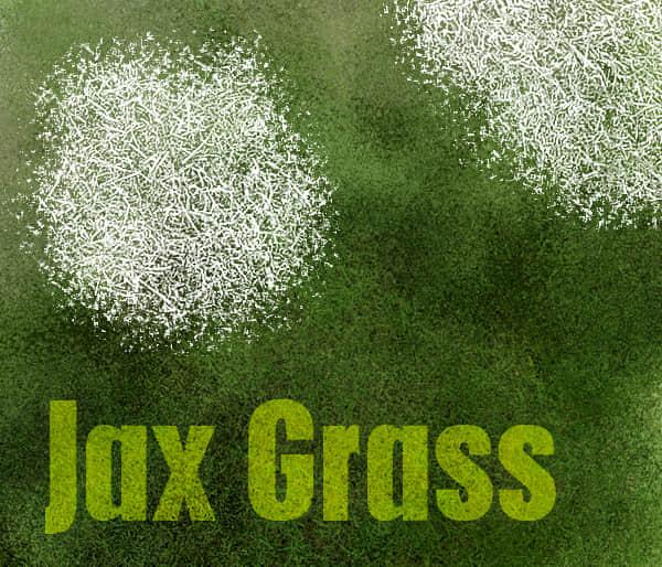 Jax-Grass4