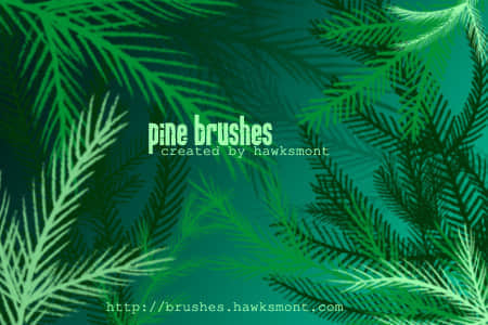 pine-brushes-by-hawksmont