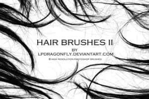 brush12