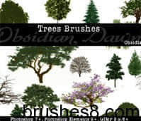 Trees_Photoshop_Brushes_by_redheadstock