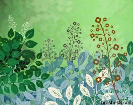 矢量植物艺术PS笔刷 花 自然 绿叶 植物 树叶  plants brushes