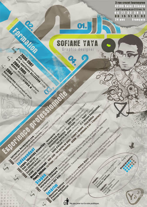graphic-resume-29
