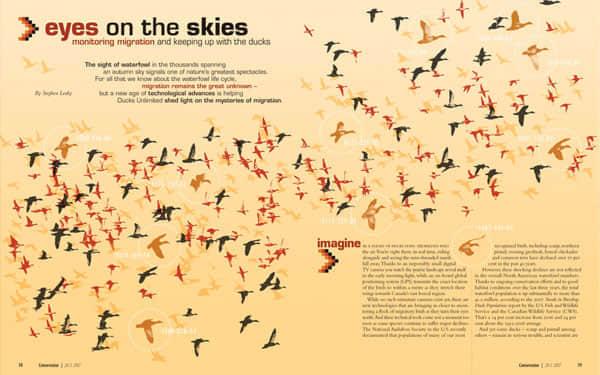 magazine-layout-12
