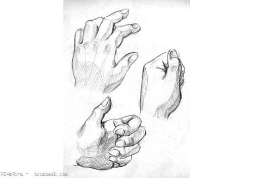 最全面的人体素描绘画教程集合 : ps笔刷吧-笔