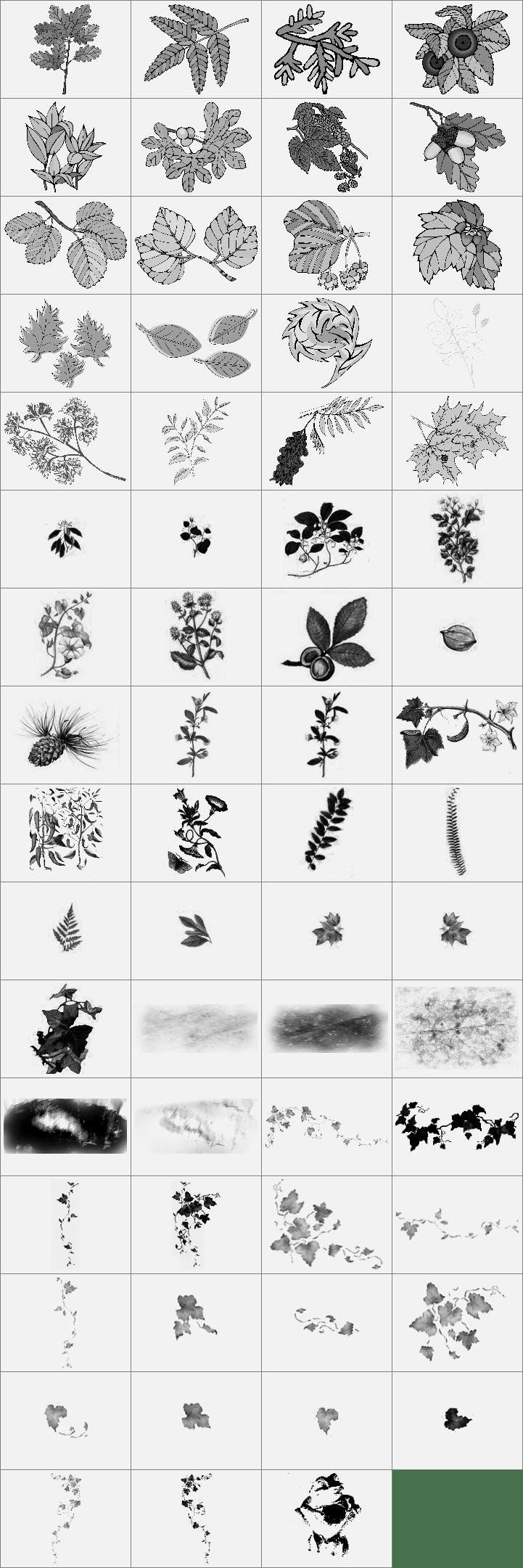 八个形色各异的树叶笔刷打包下载