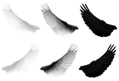 天使的翅膀笔刷