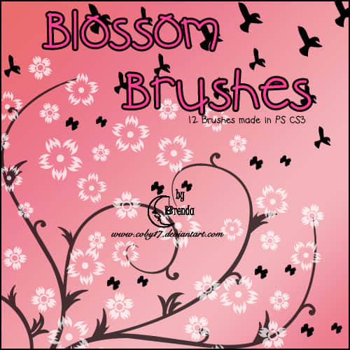 Blossom_Brushes_by_Coby17