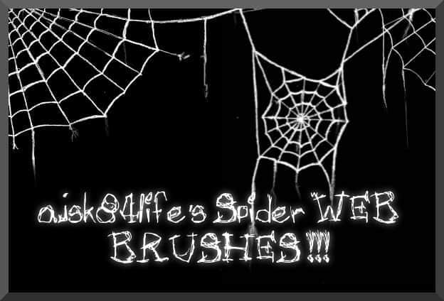 蜘蛛网笔刷