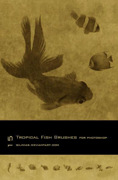 金鱼热带鱼笔刷