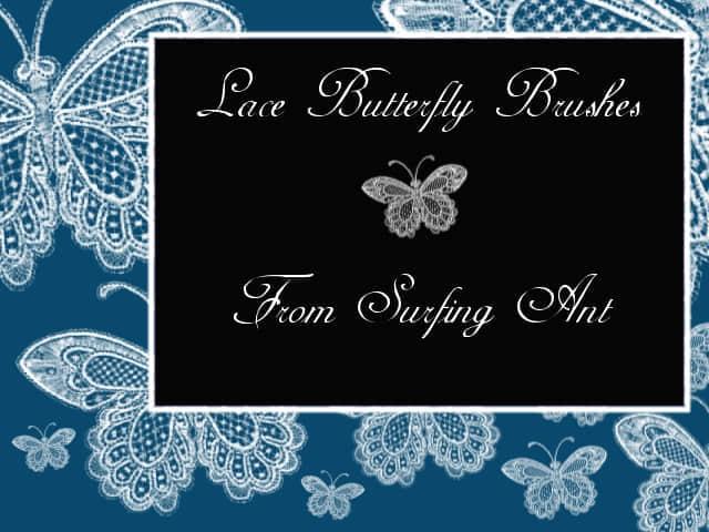 蕾丝花纹式蝴蝶PS笔刷下载