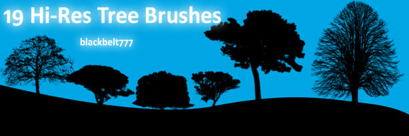 Hi_Res_Tree_Brushes_by_blackbelt777