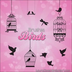 小鸟与鸟笼子笔刷