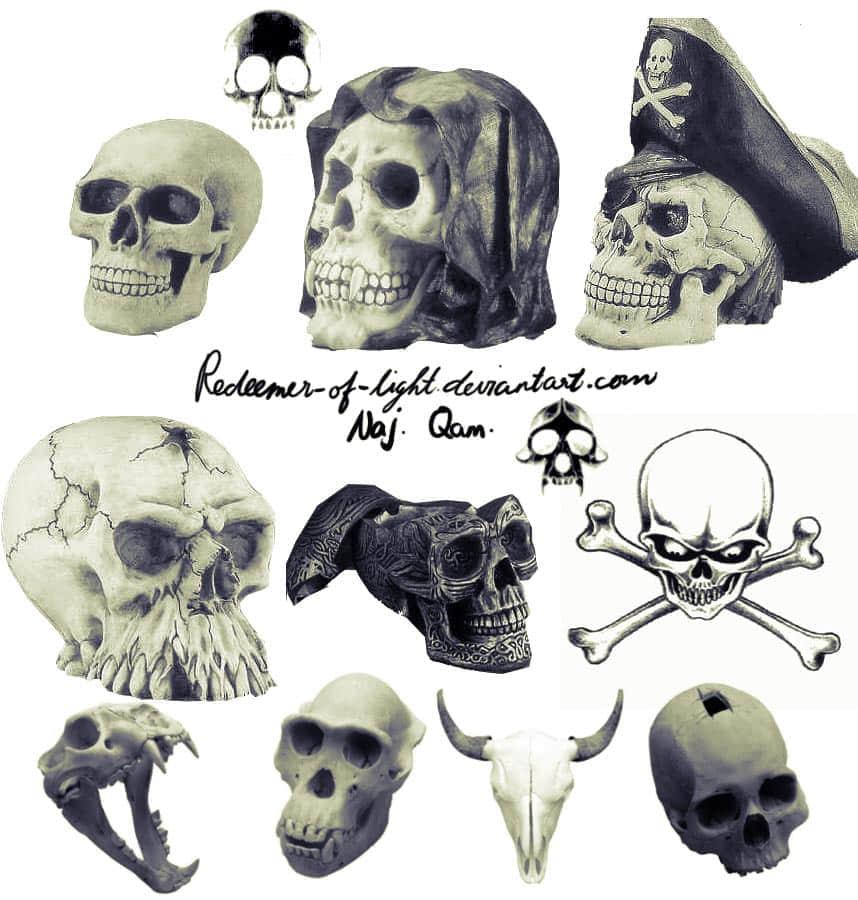 海盗骷髅头笔刷