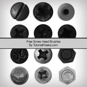 screw-head-brushes.normal