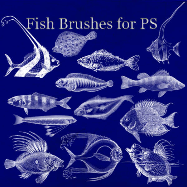 Fish_Brushes_for_PS_by_BohemianResources