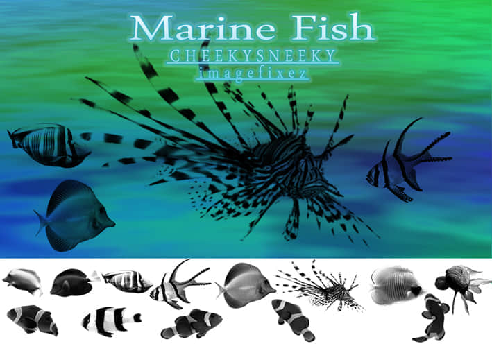 Marine_Fish_Brush_Set_by_cheekysneeky