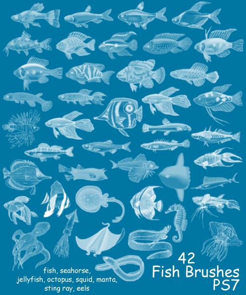 42种海洋鱼类海底生物笔刷