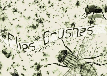 b-flies
