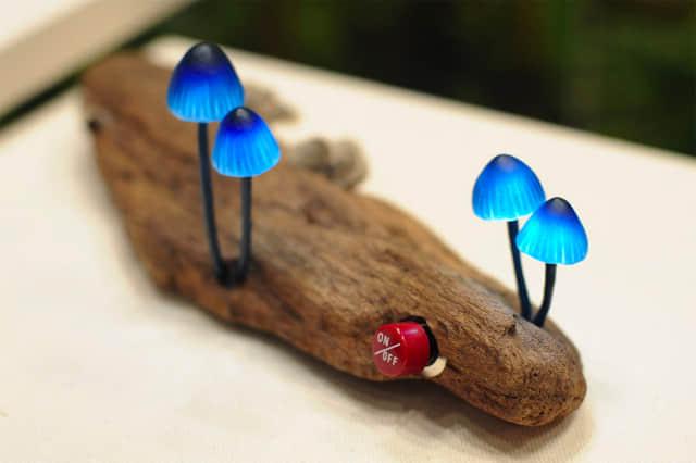 mushroom-8