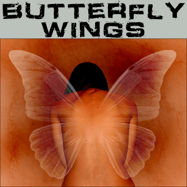 _BUTTERFLY_WINGS__by_trisste_brushes