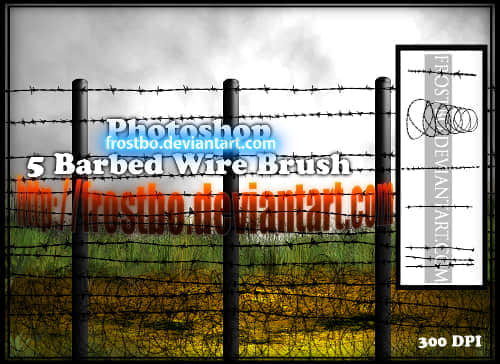 barbed_wire_brush_ps_by_frostbo-d4bup7j