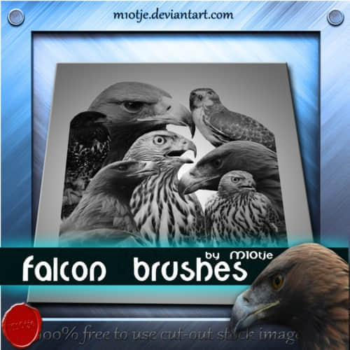 falcon_brushes_by_m10tje