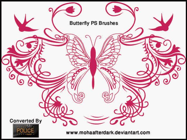 cool_butterfly_by_mohaafterdark-d3c1m2p