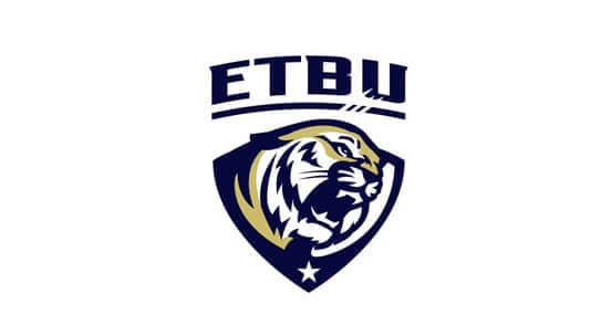 老虎 logo