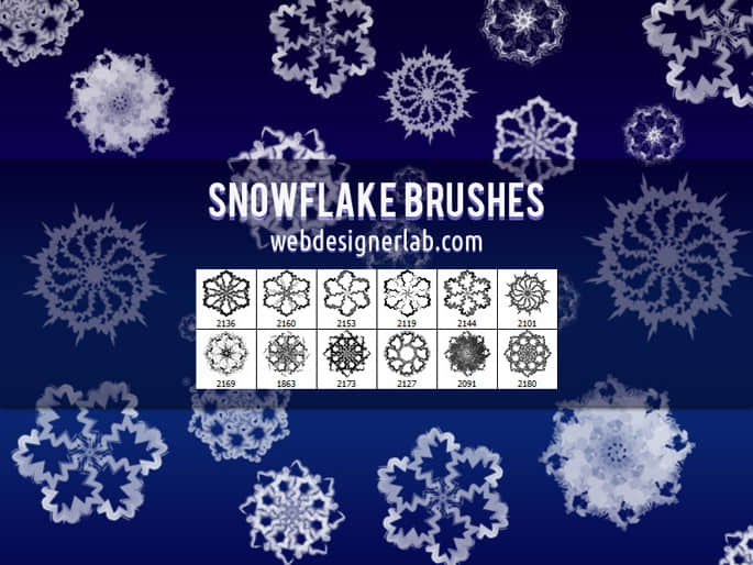 漂亮的12个雪花花纹图案photoshop笔刷素材 雪花笔刷  adornment brushes flowers brushes background brushes