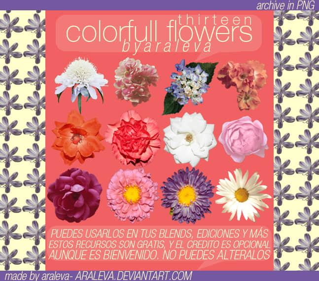 13种漂亮盛开的真实鲜花花朵Photoshop笔刷 鲜花笔刷 花朵笔刷  plants brushes