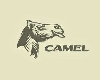 13个骆驼造型的标志logo设计方案 国外Logo设计 动物logo设计  logo%e8%ae%be%e8%ae%a1