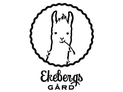 sketch_alpaca