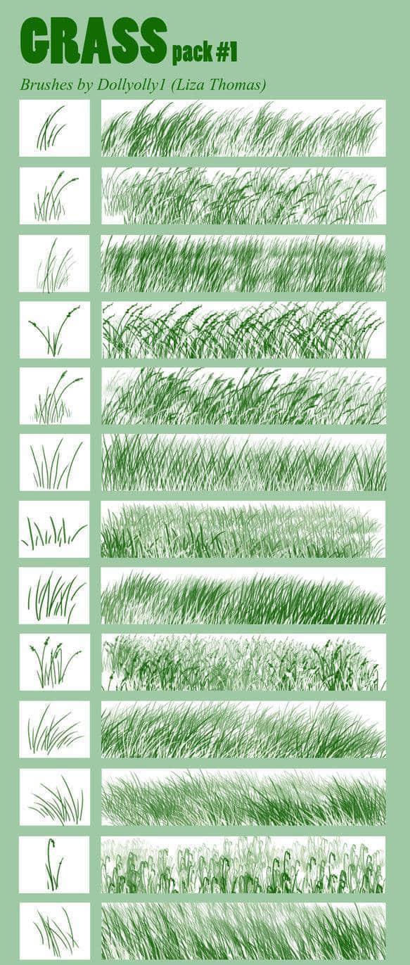 各式各样的青草、草丛效果PS画笔笔刷 青草笔刷 草地笔刷 草丛笔刷  plants brushes