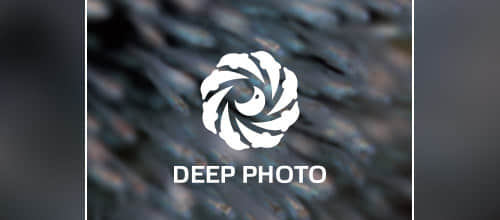71个动物性海豚造型logo标志设计合集 海豚logo 国外Logo设计 动物logo设计  logo%e8%ae%be%e8%ae%a1