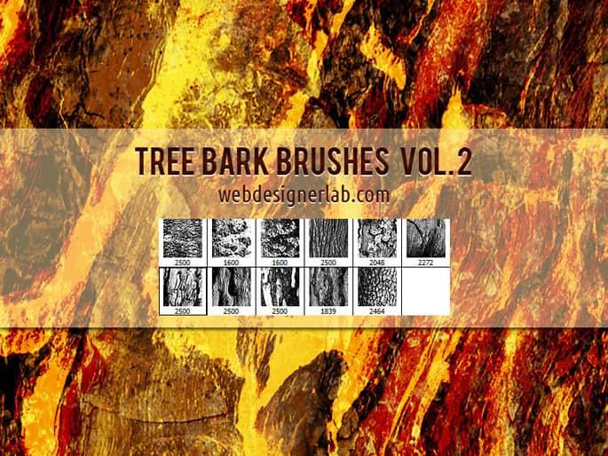 老旧的树皮纹理、大树表皮Photoshop笔刷素材 树皮笔刷 树木纹理笔刷 木材纹理笔刷 大树纹理笔刷  plants brushes
