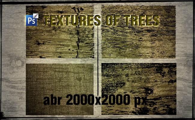 老旧树木、树皮纹理效果PS笔刷素材下载 纹理笔刷 树皮笔刷 木纹理笔刷 大树笔刷  background brushes plants brushes