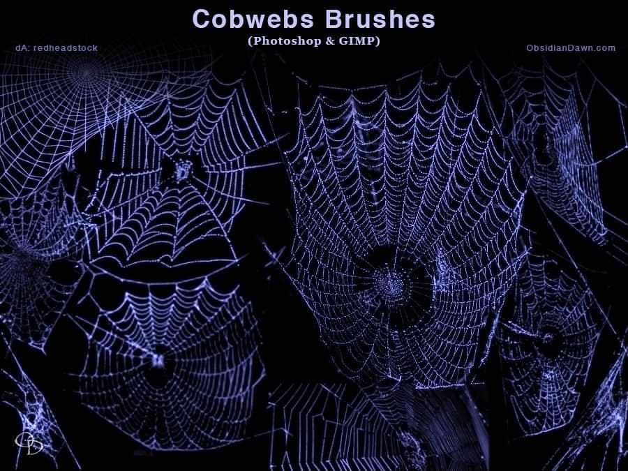 真实的蜘蛛网效果Photoshop笔刷素材 蜘蛛网笔刷 蛛网笔刷  other brushes