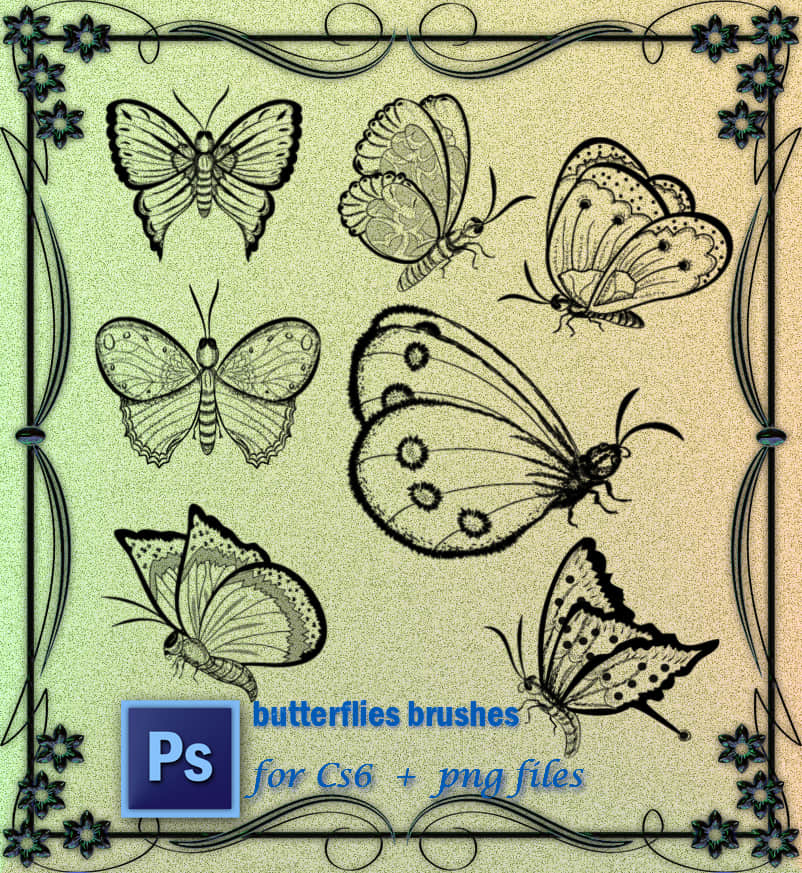 漂亮的蝴蝶图案Photoshop笔刷 蝴蝶笔刷  insects brushes