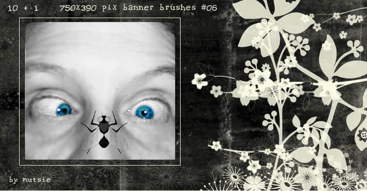 非主流相框照片背景素材Photoshop装饰笔刷 相框笔刷 照片背景笔刷  adornment brushes