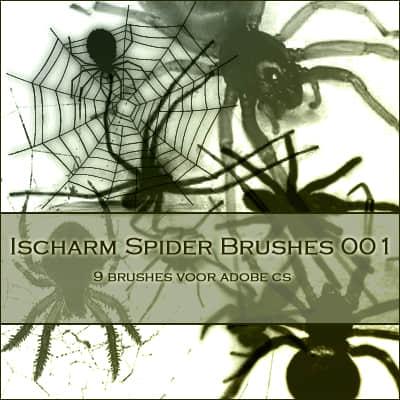 真实的毒蜘蛛Photoshop笔刷素材 蜘蛛笔刷  insects brushes