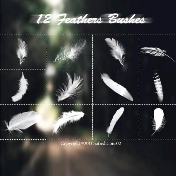 洁白圣洁天使羽毛Photoshop笔刷素材 鹅毛笔刷 鸟毛笔刷 羽毛笔刷  wings brushes