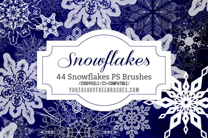 44种高清雪花图案纹饰Photoshop圣诞节花纹笔刷 雪花笔刷 圣诞节笔刷 古典花纹笔刷  flowers brushes