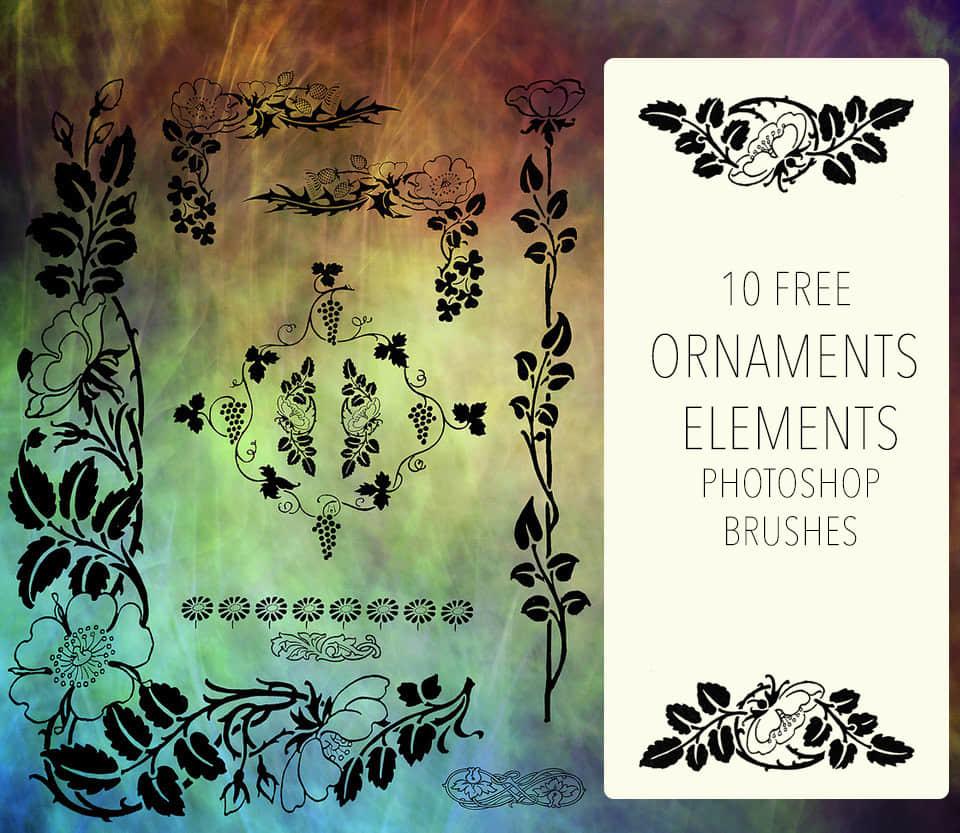 漂亮的欧式贵族植物花纹图案PS笔刷下载 贵族花纹笔刷 欧式花纹笔刷 植物花纹笔刷  adornment brushes flowers brushes