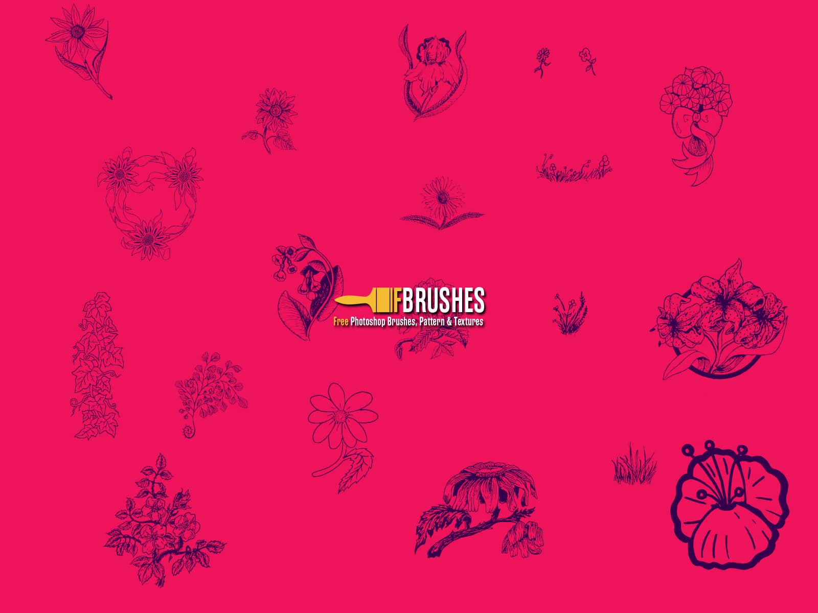 漂亮的手绘花卉图案、花朵图案Photoshop笔刷下载 花纹笔刷 花朵花纹笔刷 花卉笔刷 植物花纹笔刷 手绘花纹笔刷  flowers brushes
