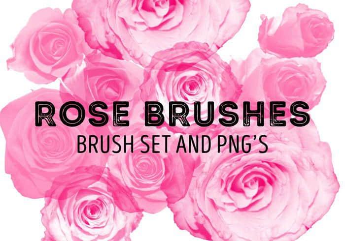 玫瑰花花朵Photoshop鲜花笔刷 鲜花笔刷 花朵笔刷 玫瑰花笔刷  plants brushes