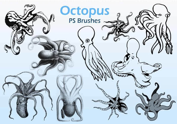 20-octopus-ps-brushes-abr