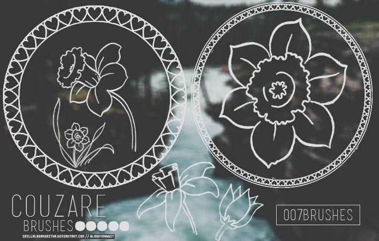 漂亮的手绘罗盘花纹图案Photoshop花纹笔刷 花纹笔刷 罗盘花纹笔刷  flowers brushes