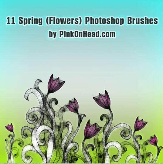 11种黑暗花朵、花纹图像PS笔刷下载 黑暗花朵笔刷 花朵笔刷 花卉笔刷  flowers brushes