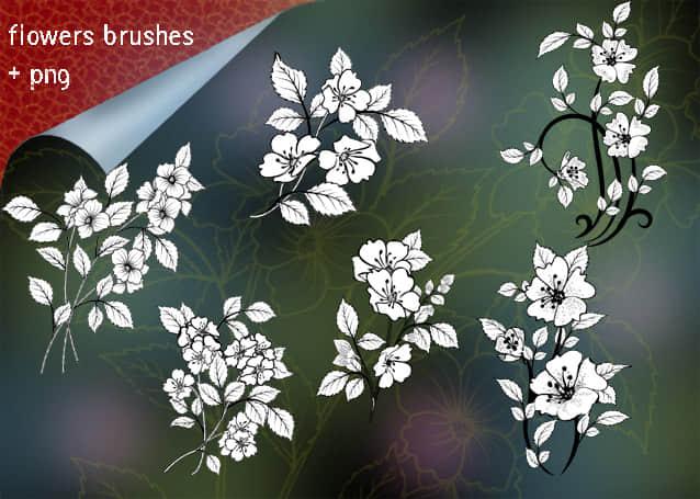 漂亮的鲜花、花朵图案Photoshop花纹笔刷 鲜花笔刷 花朵笔刷  flowers brushes